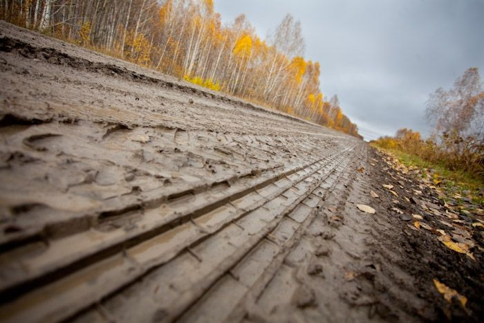 From Osenin to Veil | Moles on the map - Autumn, Northern Region, Novosibirsk, Russia