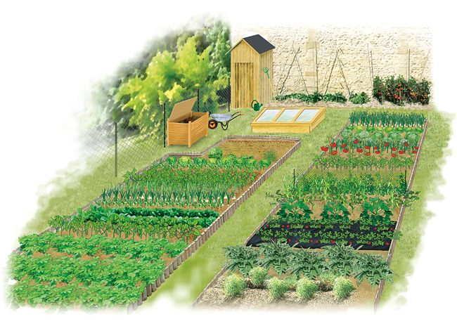 Organiser Le Potager En Debut D Annee Jardins Jardin Potager Et