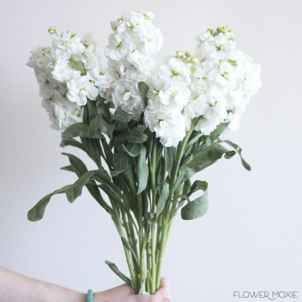 Weddingflowers In 2020 Beach Wedding Flowers Wedding Flower Arrangements White Wedding Flowers