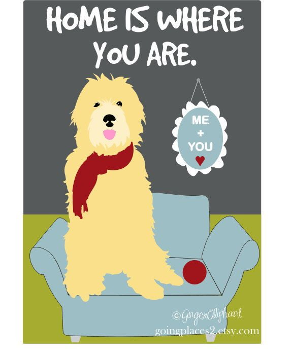 Golden Doodle Art Wall Decor Home is Where You Are 5 x 7 Matted ...