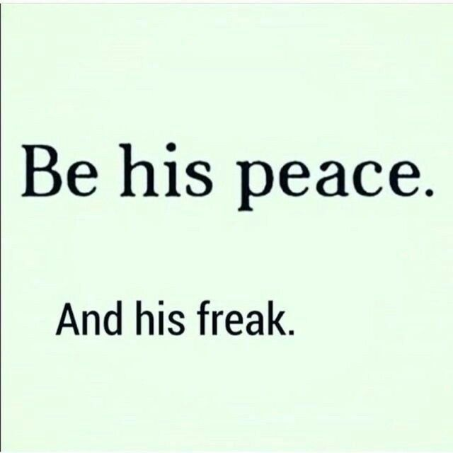 My King I Am That His Peace Never A Dull Moment