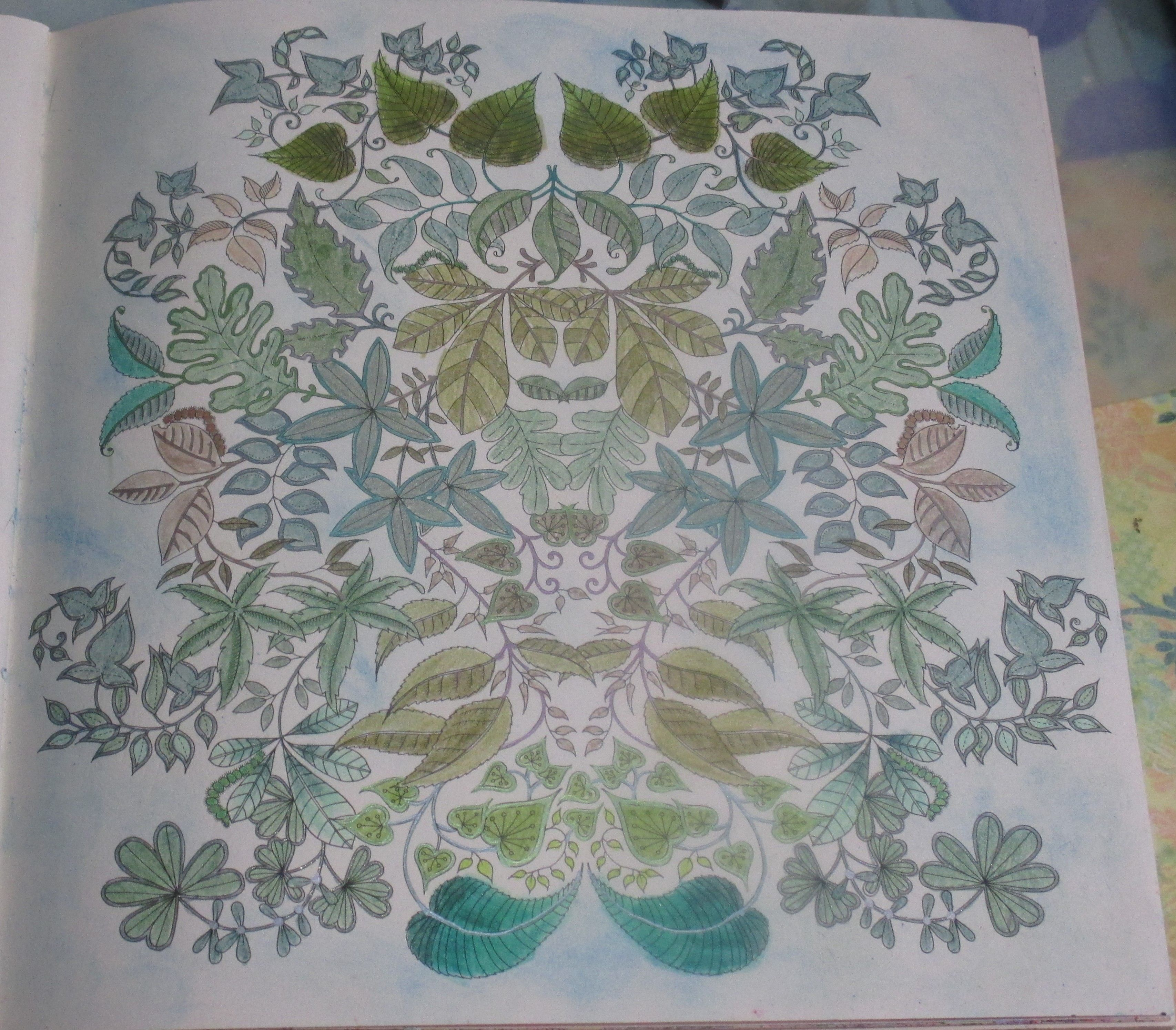 The secret garden coloring book target - Johanna Basford Secret Garden Colored In Tombow Markers