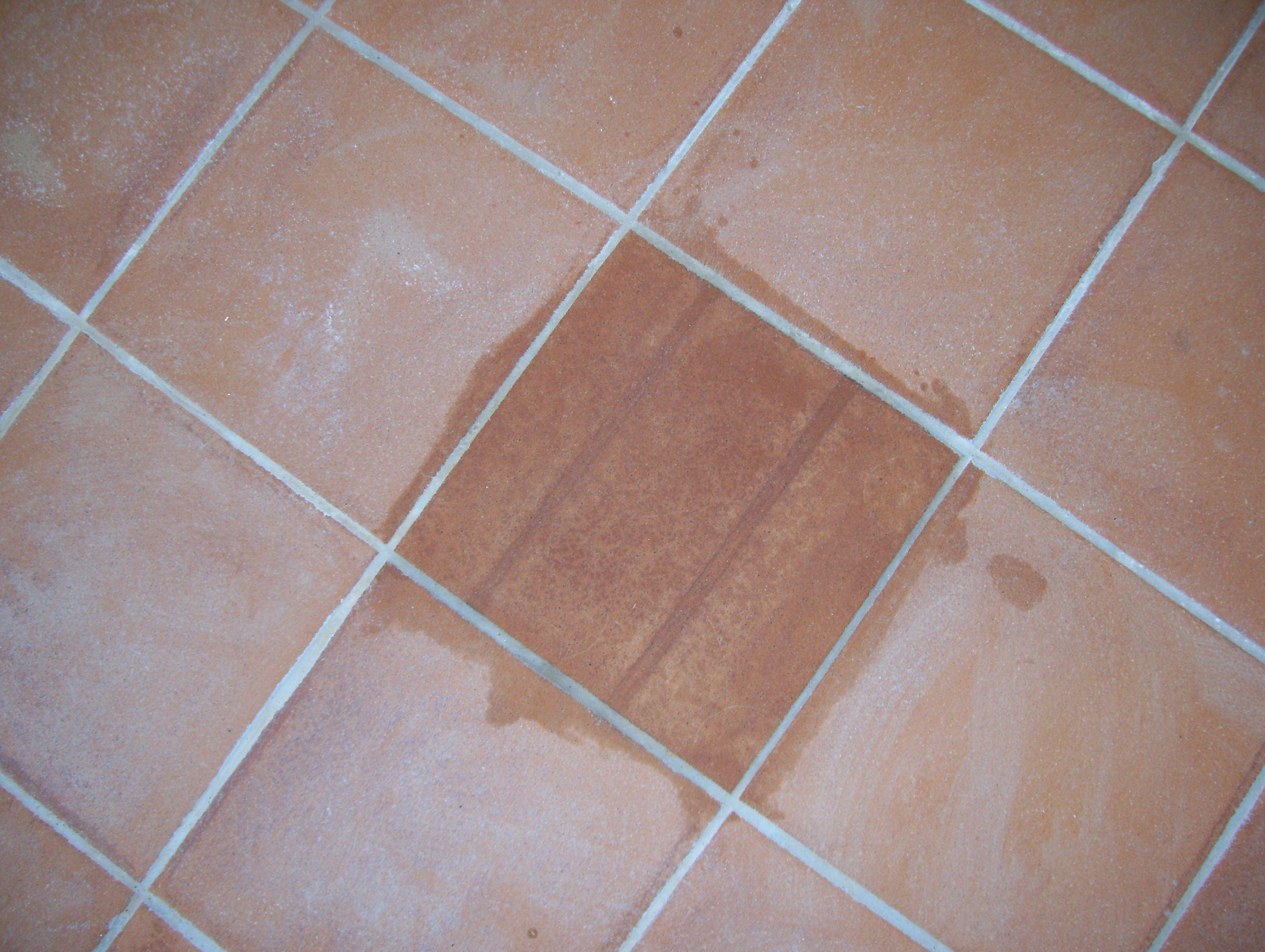 Prodotti Per Pulire Cotto Esterno pavimento in cotto   pavimenti in cotto, pulito, pavimenti