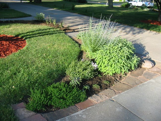 End of driveway landscaping ideas front herb bed front for Front garden and driveway designs
