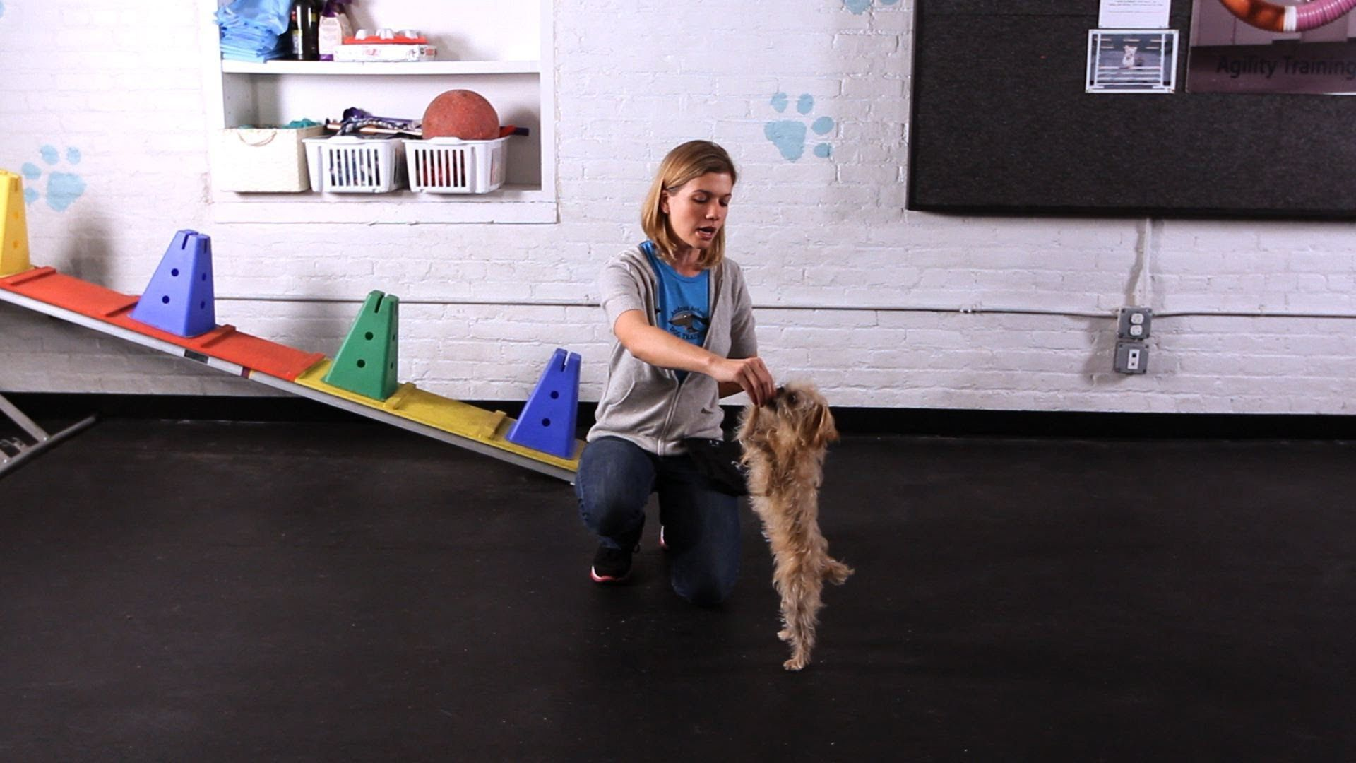 How To Teach Your Dog To Dance Dog Tricks Dog Hacks Dog