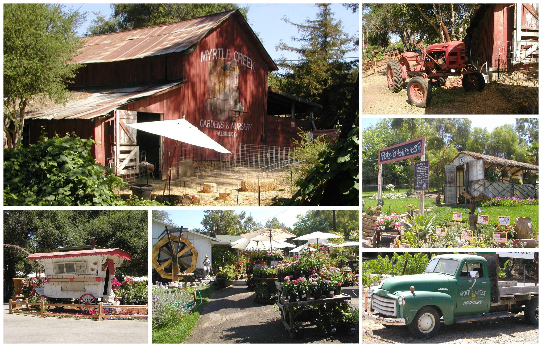 8007c25454ea51a7ca758e940ed5242f - Myrtle Creek Botanical Gardens & Nursery Fallbrook Ca