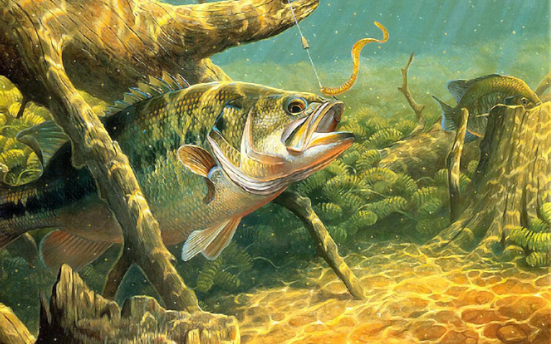 картинки для декупажа рыбалка в хорошем качестве должен