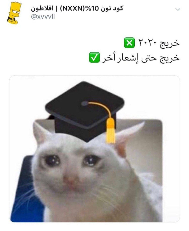Pin By 3 N A D Al Fayez On تفاهة ولا برتقال Funny Arabic Quotes Funny Lol