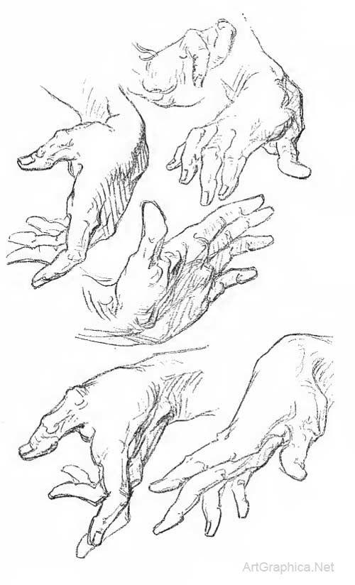 george bridgman, constructive anatomy online, anatomy lessons online ...