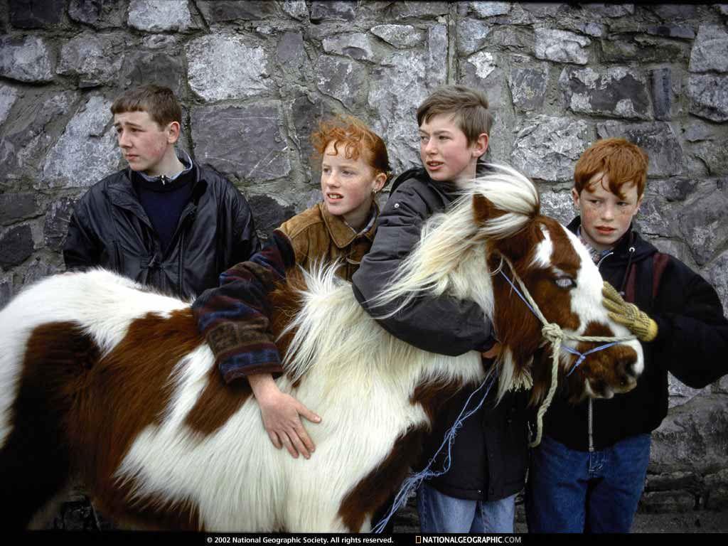 Irish lads...