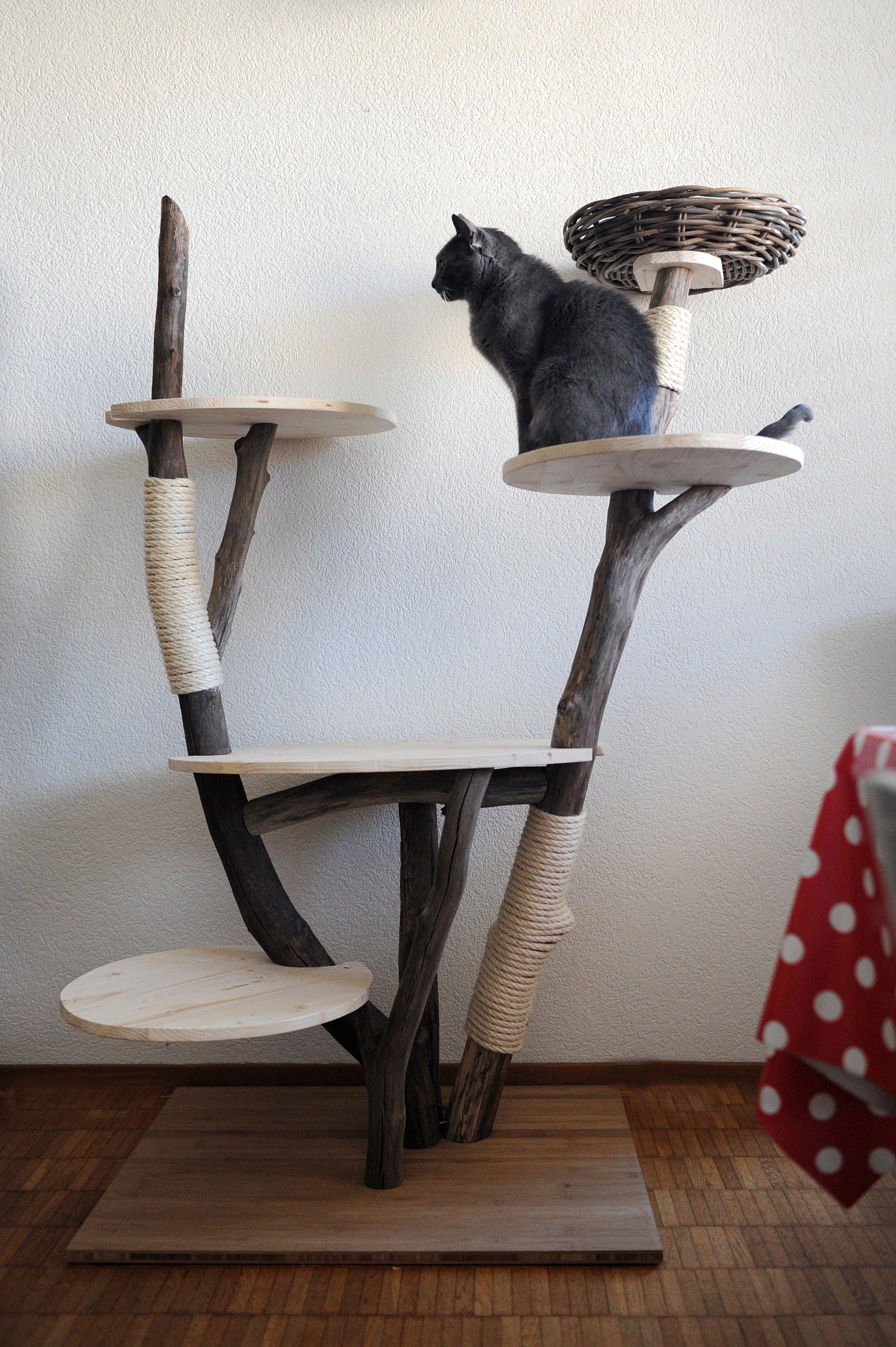 arbre chat en bois flott deco bois flott pinterest. Black Bedroom Furniture Sets. Home Design Ideas