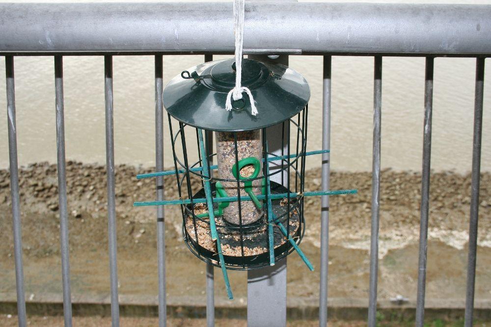 At last a pigeon proof bird feeder bird feeders bird