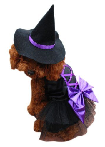 FLAX Witch Dog Hat Halloween Party Cosplay Hat for Dog and Cat
