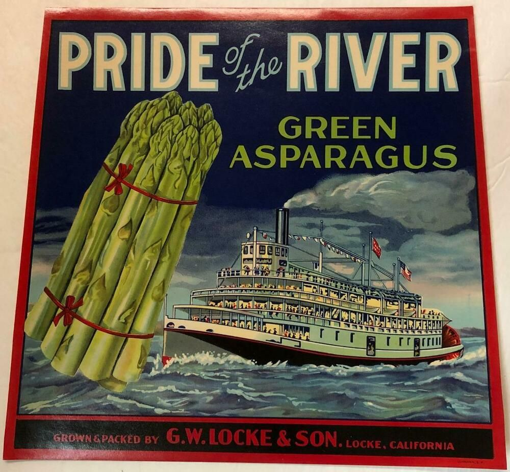Pride Of The River Green Asparagus Crate Label G W Locke Son