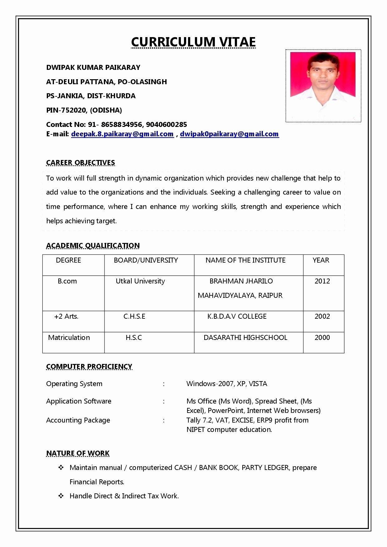 Basic Resume Template Free Download