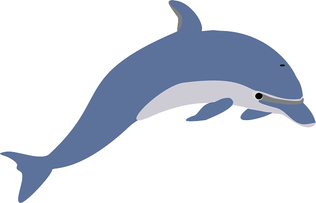 Free Image On Pixabay Dolphin Leaping Fish Mammal In 2020 Dolphin Images Dolphin Clipart Dolphins