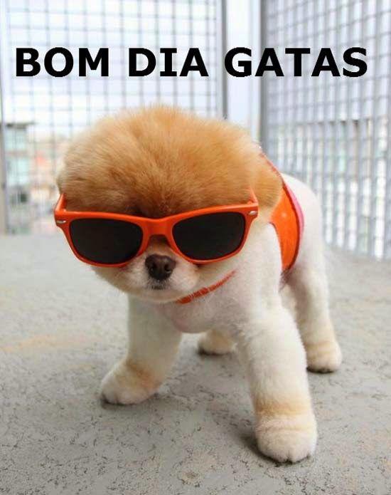 As Mais Fofinhas Imagens De Bom Dia Para Postar No Facebook