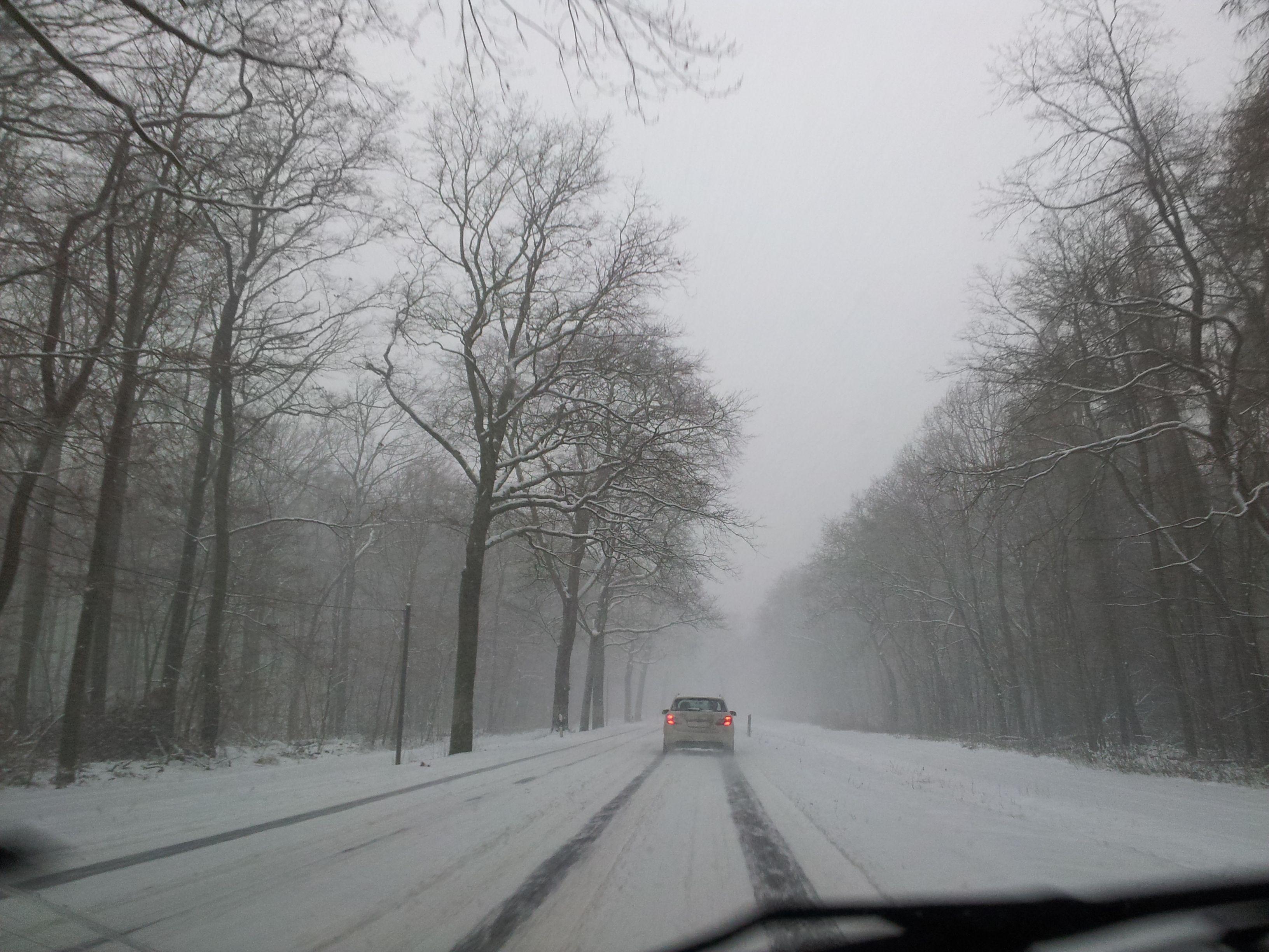 Auf dem Weg von Potsdam nach Geltow am Dienstag, 11. Dezember 2012.