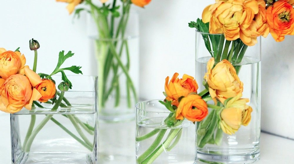 How To Clean a Flower Vase   Flower vases  Cut flowers and Flower How To Clean a Flower Vase