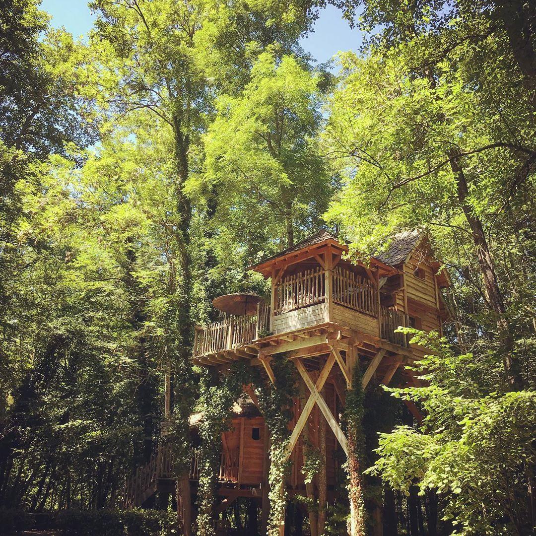 Nichee En Pleine Nature Et Cotoyant La Cime Des Arbres La Cabane En Bois Perchee Est Un Hebergement Insolite Le Temp Treehouse Living Tree House House Styles