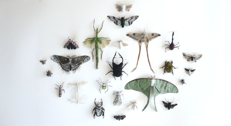 adrienne antonson - insects: made from her own hair