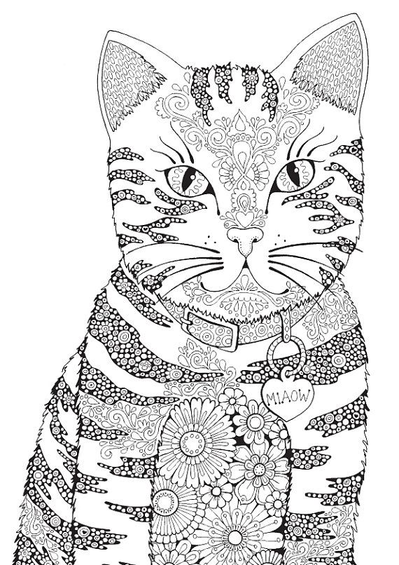 Colour Me Animals : Miaow colour with me hello angel coloring design