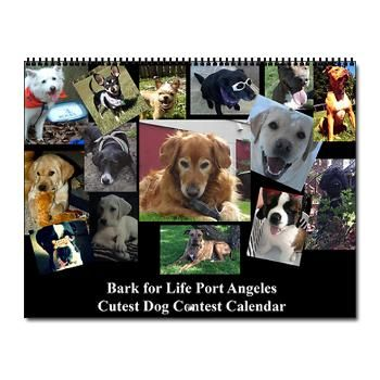 Bark For Life Image By Ivy Heath In 2020 Port Angeles Dog