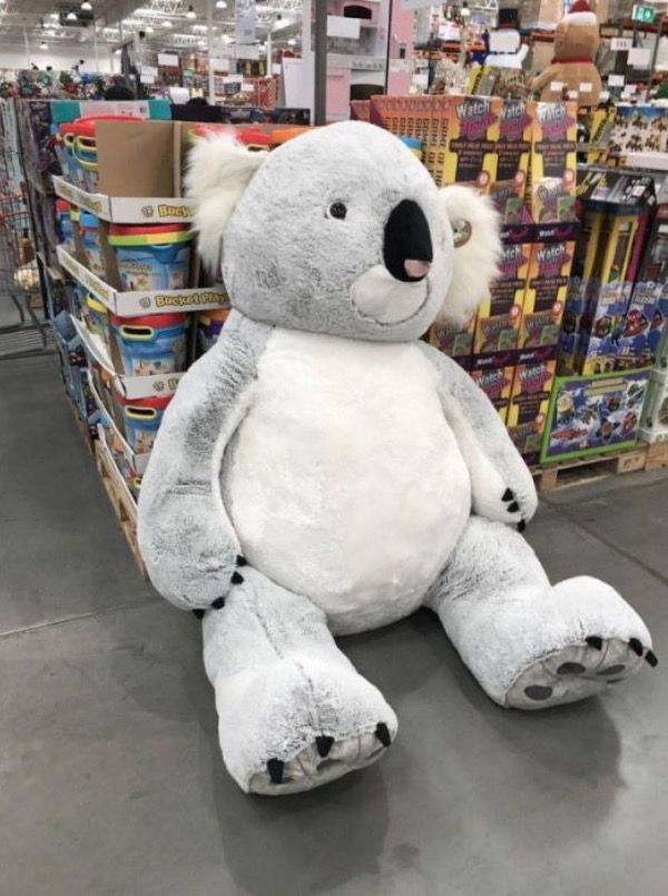 Baby Net For Stuffed Animals, Oversized Stuffed Animals At Walmart Koala Bear Stuffed Animal Oversized Stuffed Animals Giant Stuffed Animals