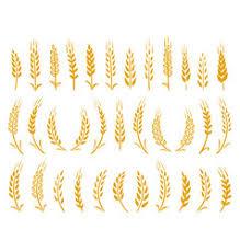 Wheat Grass Crest Icon Google Search Wheat Grass Crest Icon