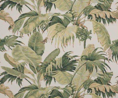 baker ferns wallpaper - Google Search
