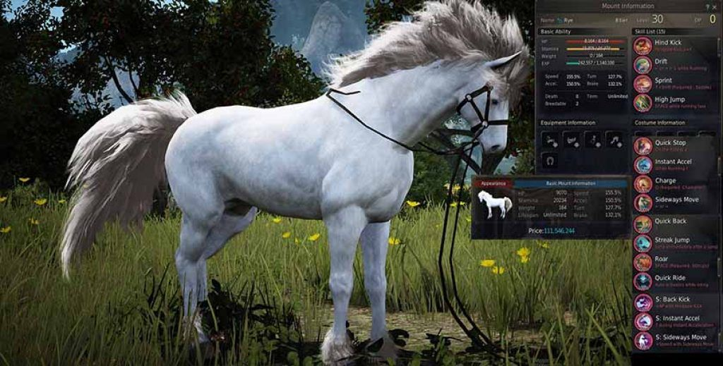 How to Breed Horses in Black Desert Online | How To | Horses