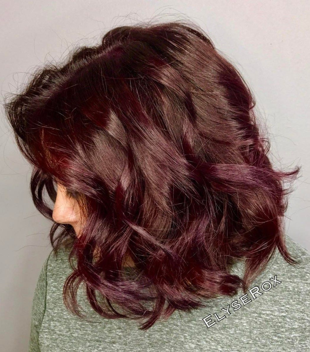 20 Plum Hair Color Ideas For Your Next Makeover Hair Pinterest