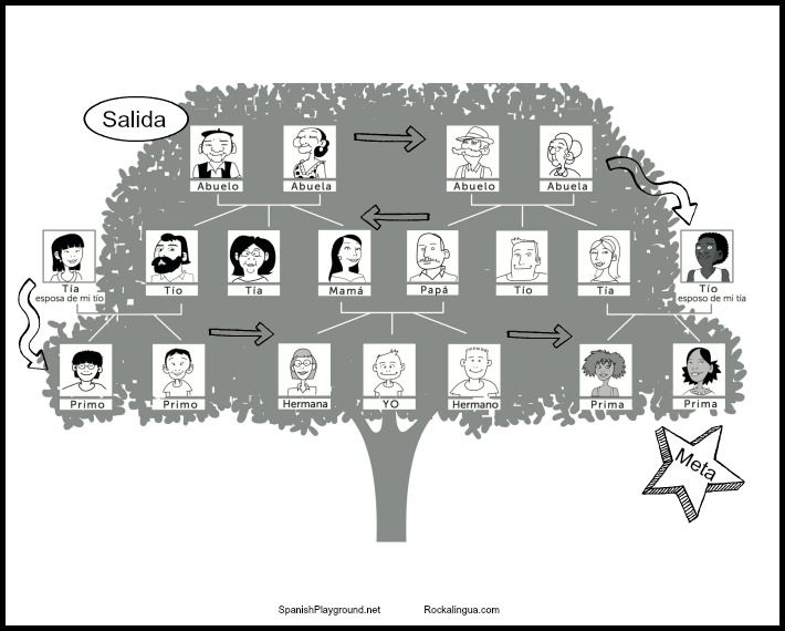 family trees in spanish - 710×570