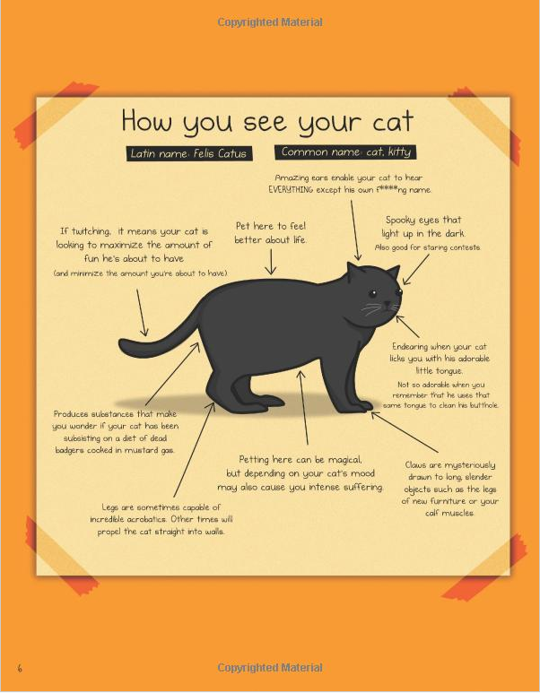 How To Tell If Your Cat Is Plotting To Kill You Ebook The Oatmeal
