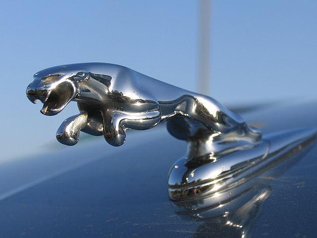Jaguar Mk2 Symbol Animal Matchbox Cars Pinterest Jaguar Cars