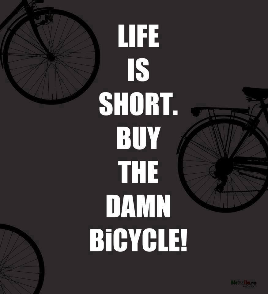 You Can Never Have Too Many Bikes Cycling Quotes Bike Quotes Cycling Inspiration