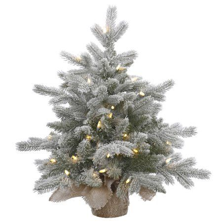 Vickerman Pre-Lit 2\u0027 Frosted Sable Artificial Christmas Tree, Dura