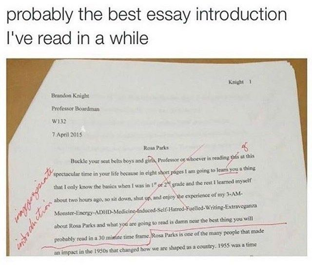 did you do the english paper what engli oh shit random inappropriate introduction that was the most fucking appropriate down to earth real life essay intro i ve honestly that kid is gonna grow up to be