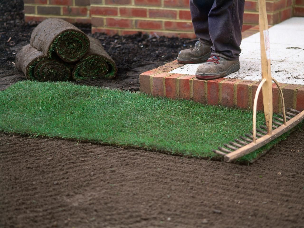 How To Install Sod Landscaping Supplies Lawn Lawn Care