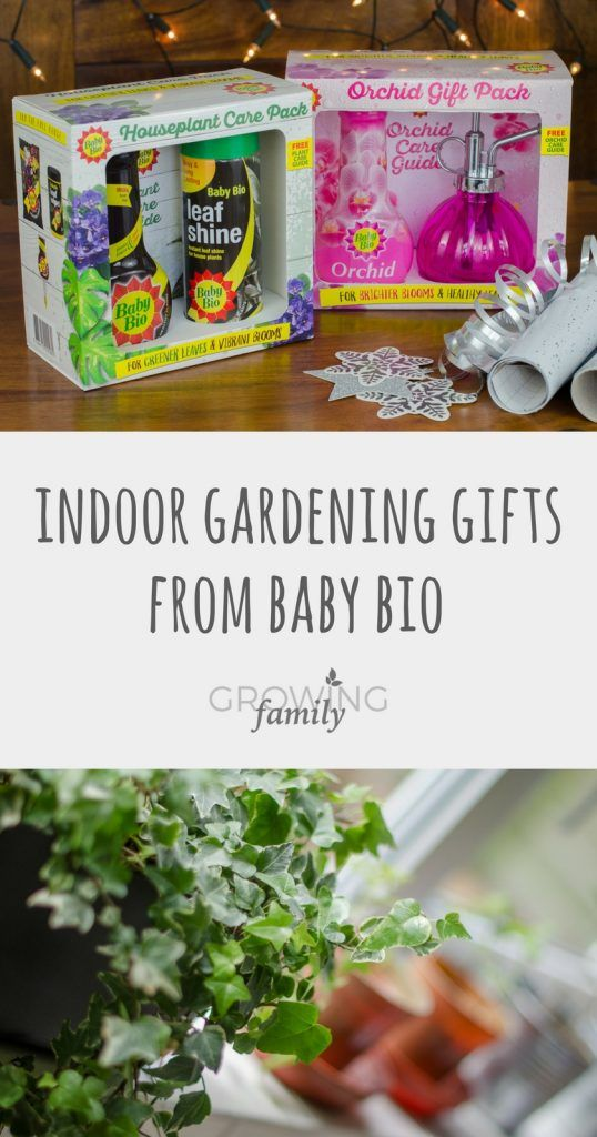 Indoor Gardening Gifts Indoor gardening gifts from baby bio plus giveaway indoor indoor gardening gifts from baby bio plus giveaway growing family workwithnaturefo