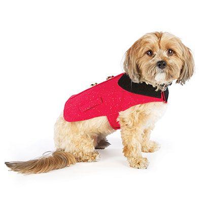 #BigLots.  Dog Jackets at Big Lots.