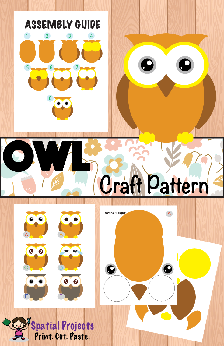 All About Owls Nonfiction Unit | Inquiry based learning, Reading ...