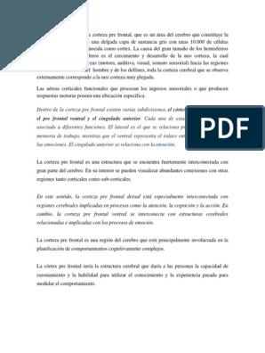 Cuadernillo Apresto Aprendizaje Sicología Y Ciencia Cognitiva Constitucion Leer Cartas Aprendizaje