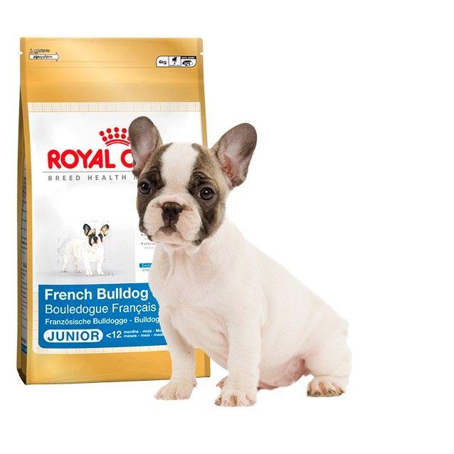 Maskokotas Com Tu Tienda De Alimentación Para Mascotas En Valencia French Bulldog Bulldog Breeds