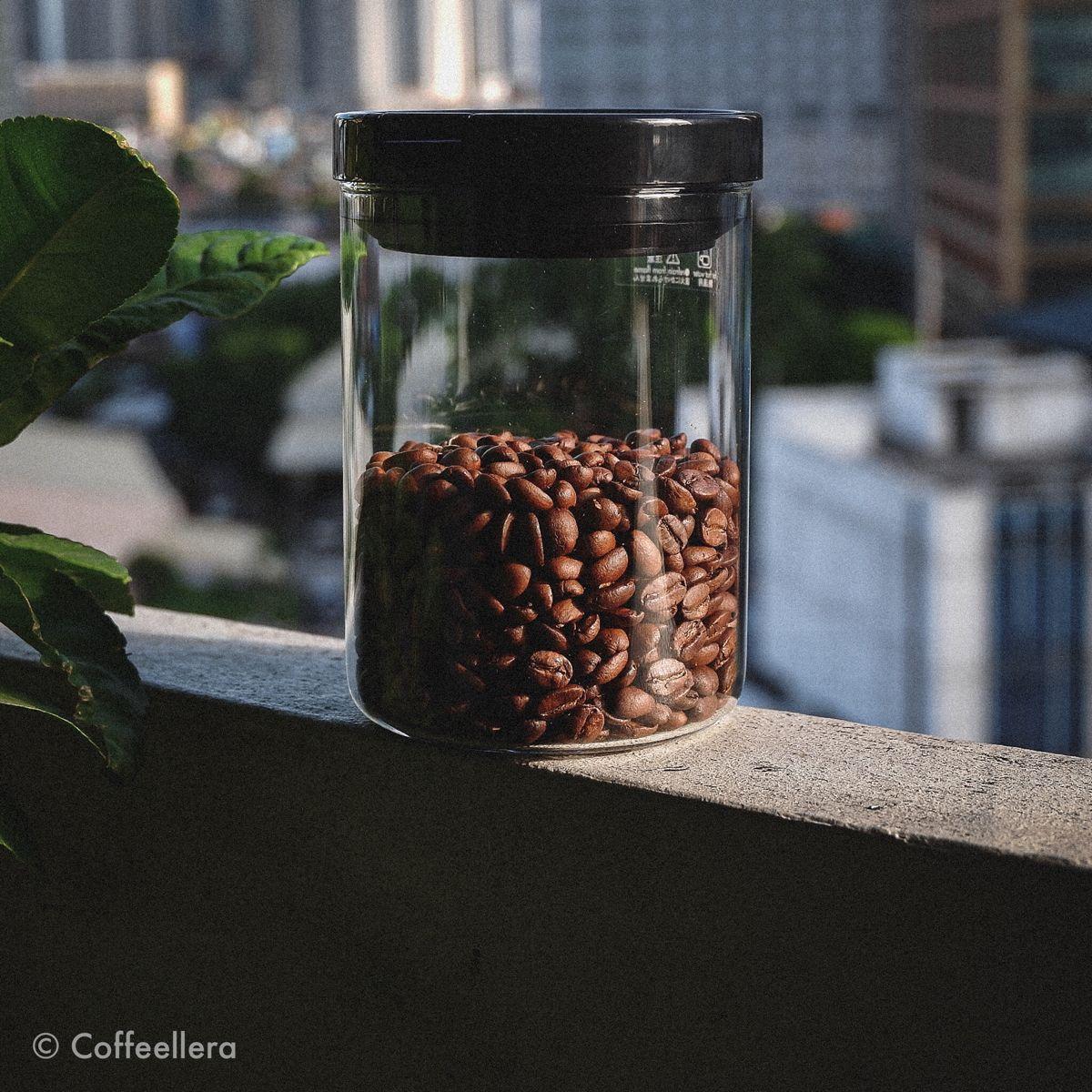 Coffee Canister in 2020 Coffee, Coffee roasting, Coffee