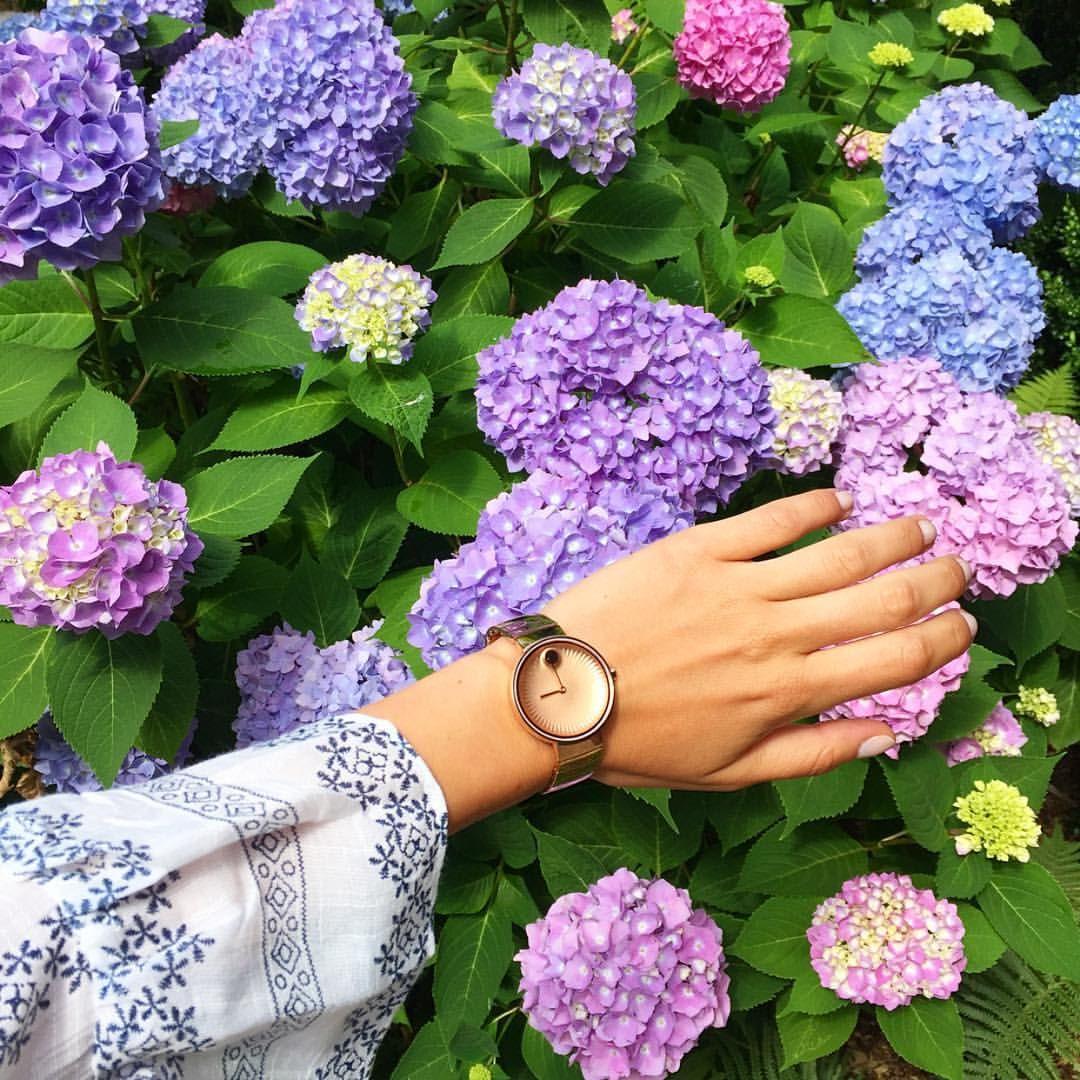 8,441 отметок «Нравится», 40 комментариев — Arielle Noa Charnas (@somethingnavy) в Instagram: «Summer color palette: rose gold x pastels. #HelloEdge #Movado 🌸»