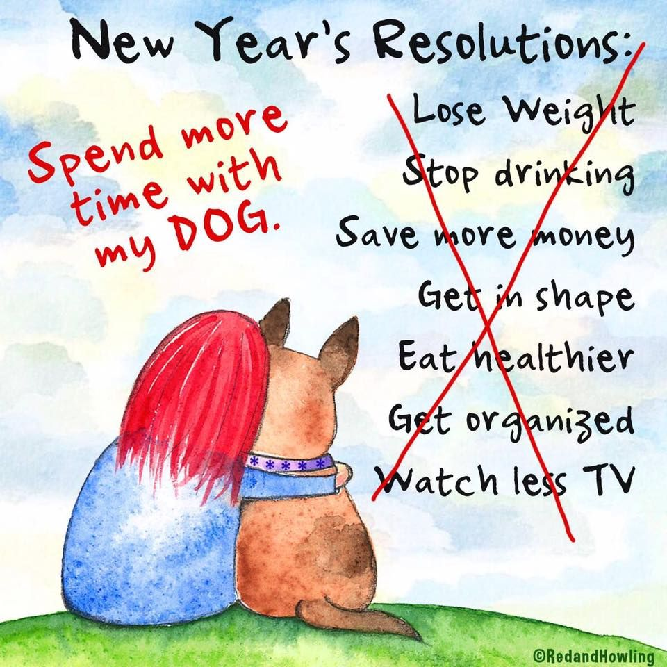 New Years resolution spend more time with my dog