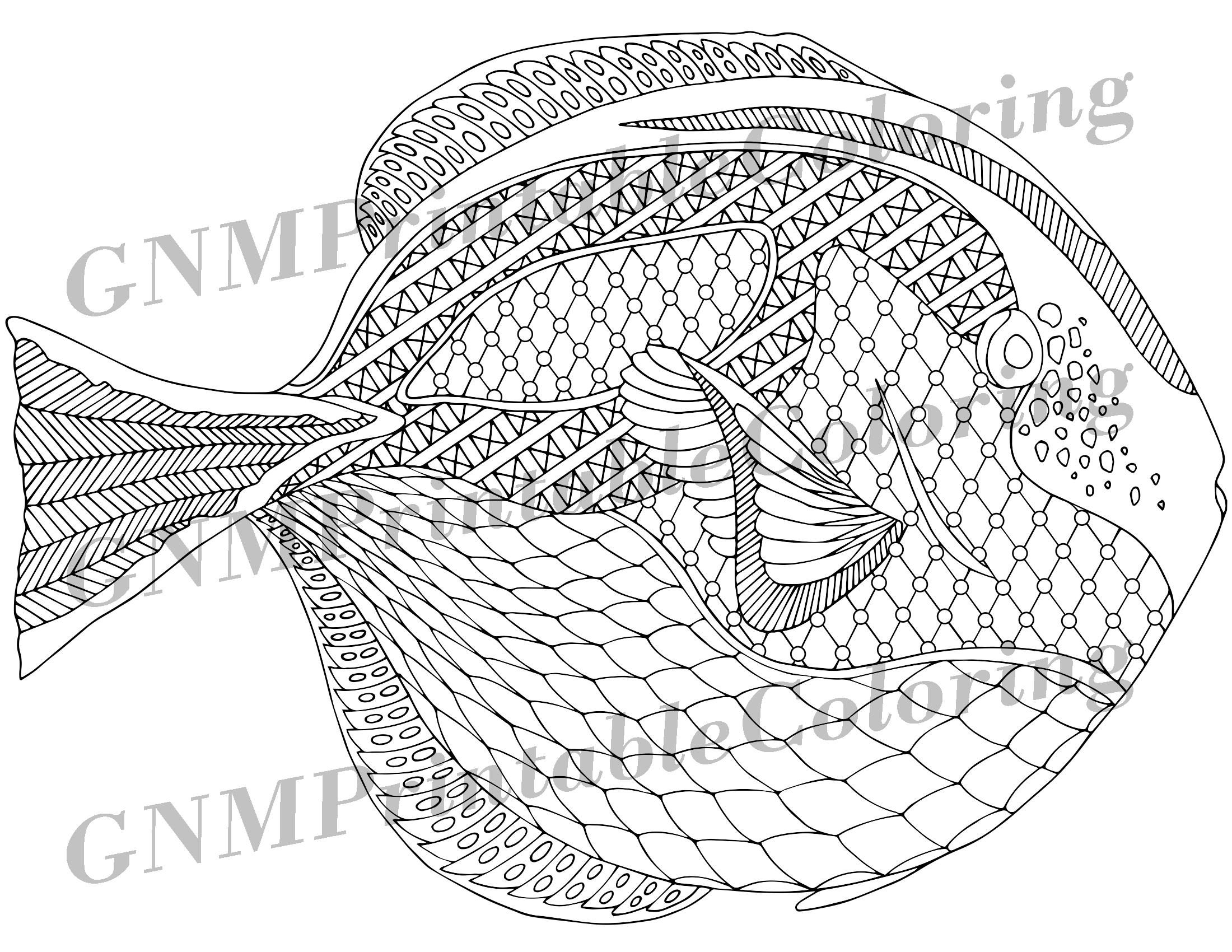 Zentangle Fish Coloring Page Therapy Coloring Under The Etsy Fish Coloring Page Blue Tang Fish Coloring Pages