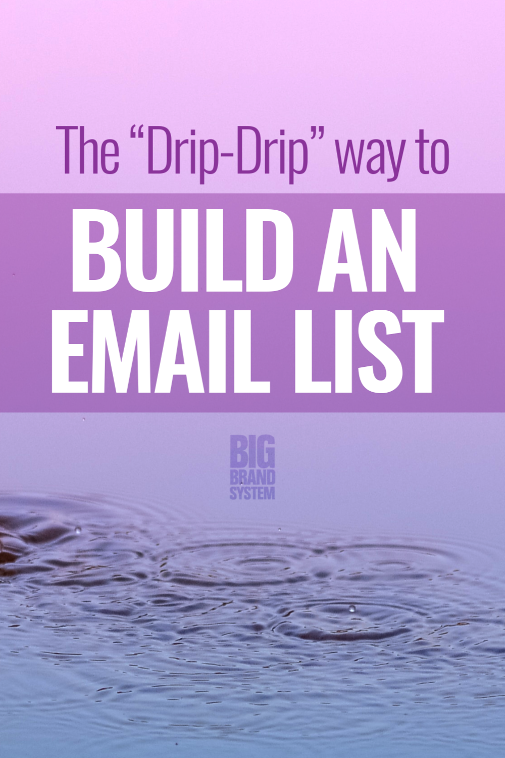 How To Build An Email List The Fast And Slow Methods In 2020 Email Marketing Inspiration Email Marketing Strategy Email Marketing Lists