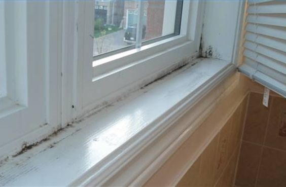 remove black mold from windows diy mold remover pinterest. Black Bedroom Furniture Sets. Home Design Ideas